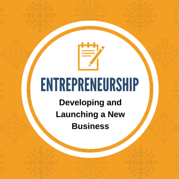 entrepreneurship - developing and launching a new business